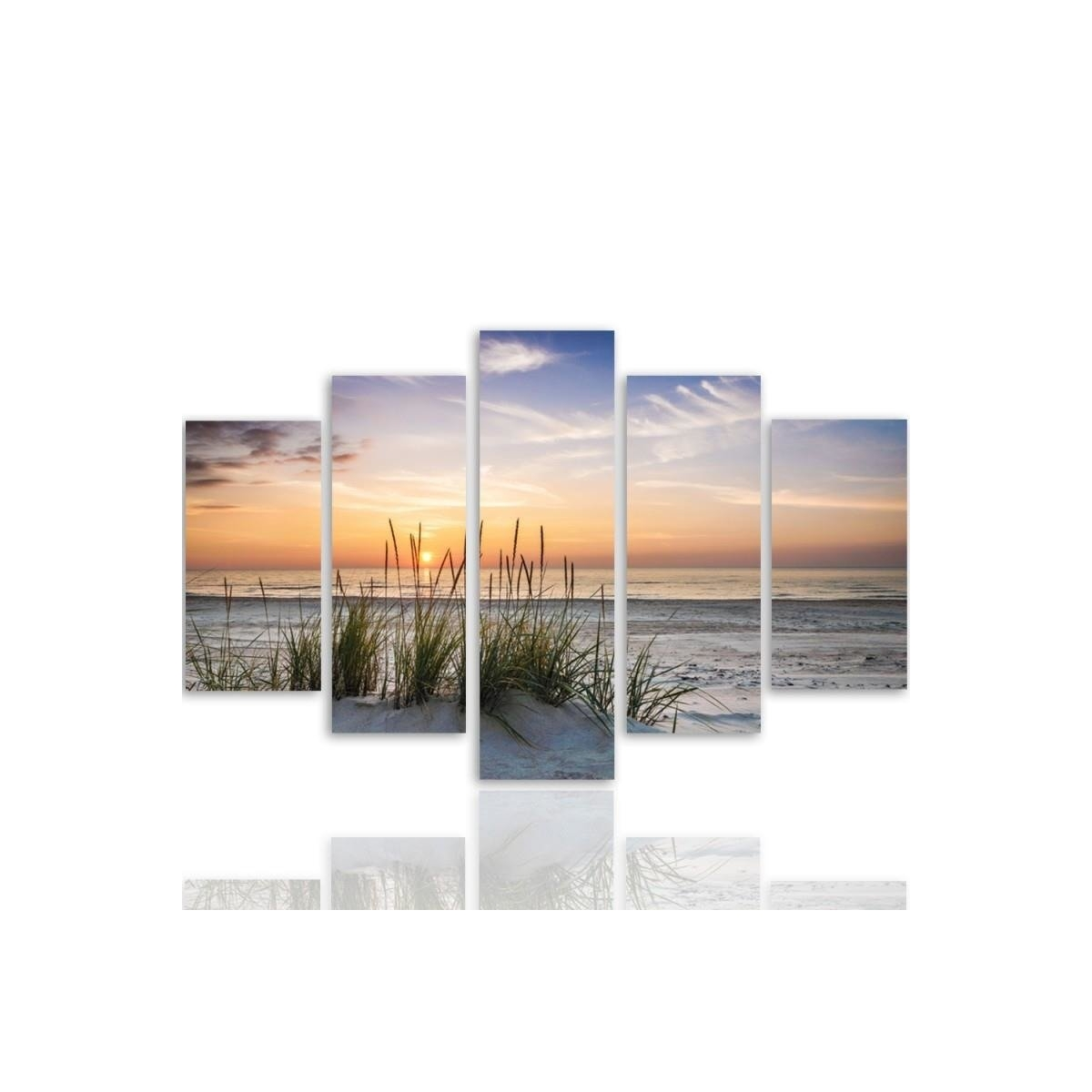 Five Part Picture On Canvas, Pentaptych, Type A, Grass On The Beach100x150