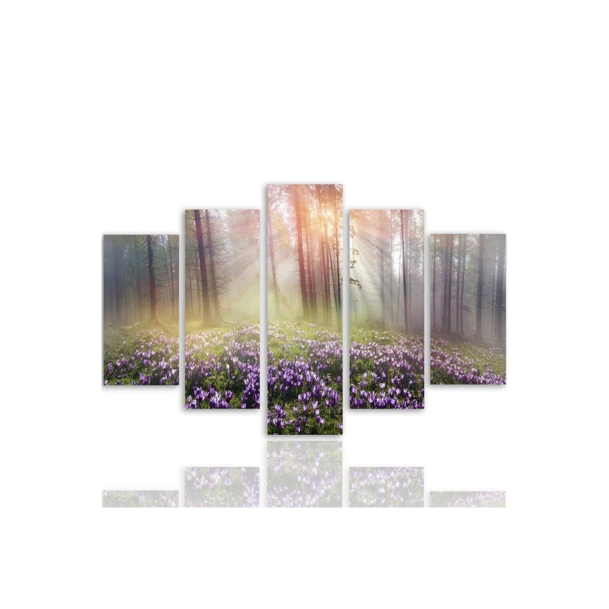 Five Part Picture On Canvas, Pentaptych, Type A, Clearing Crocuses 100x150