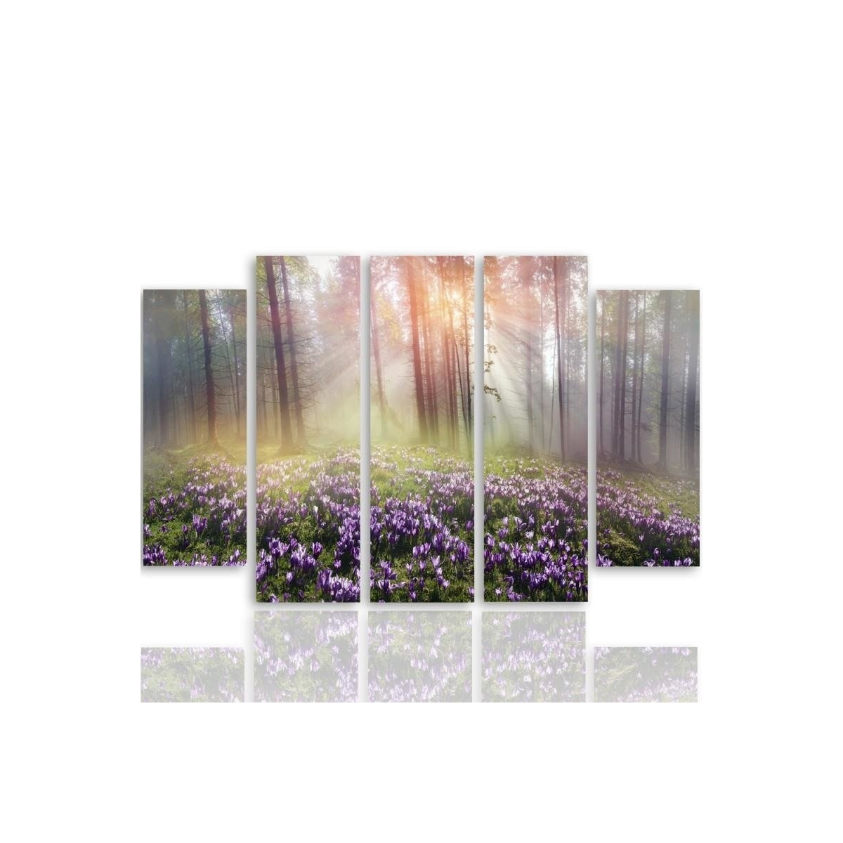 Five Part Picture On Canvas, Pentaptych, Type B, Clearing Crocuses100x150