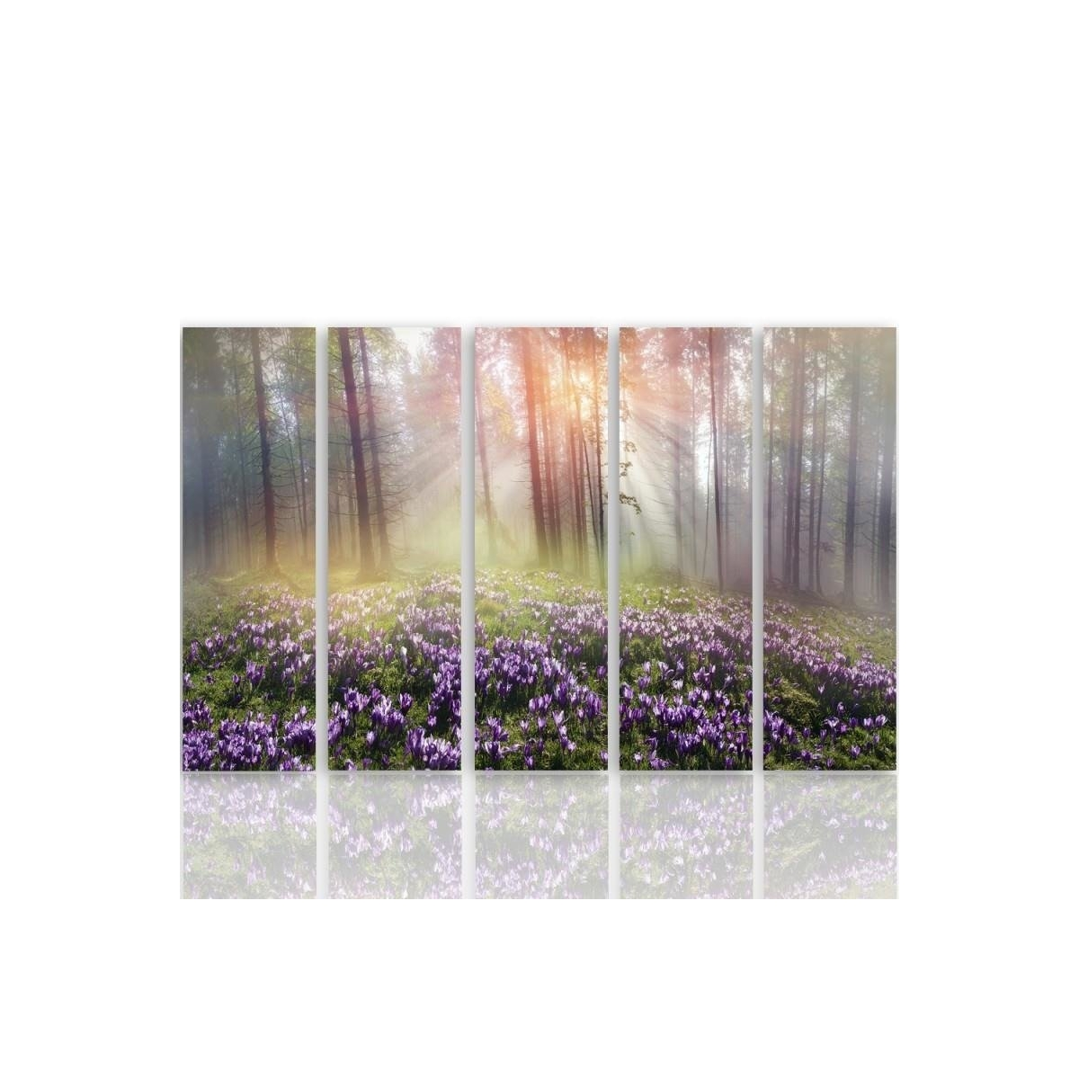 Five Part Picture On Canvas, Pentaptych, Type C, Clearing Crocuses100x150