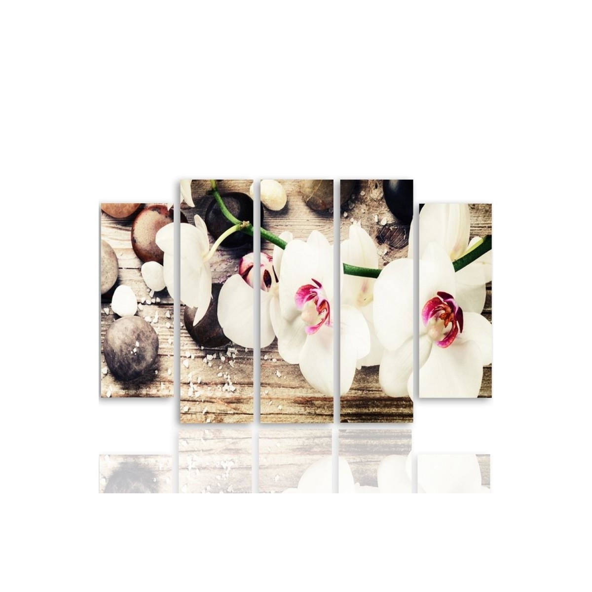 Five Part Picture On Canvas, Pentaptych, Type B, A White Orchid And Stones 100x150