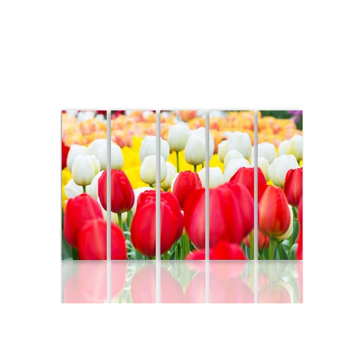 Five Part Picture On Canvas, Pentaptych, Type C, White And Red Tulips 100x150