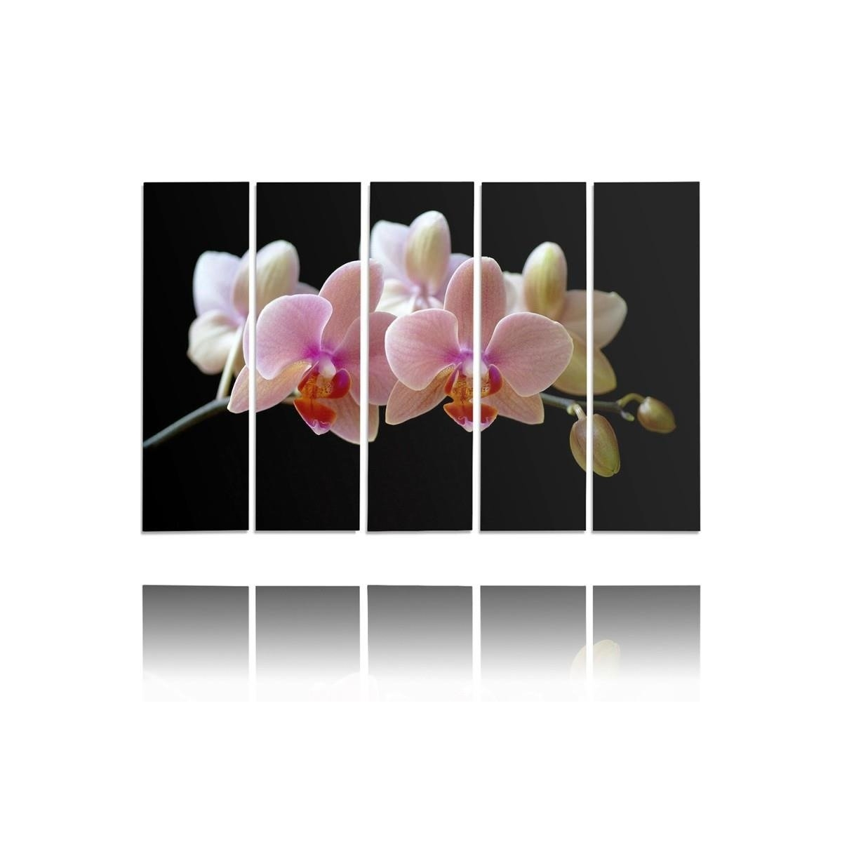 Five Part Picture On Canvas, Pentaptych, Type C, A Pink Orchid 100x150
