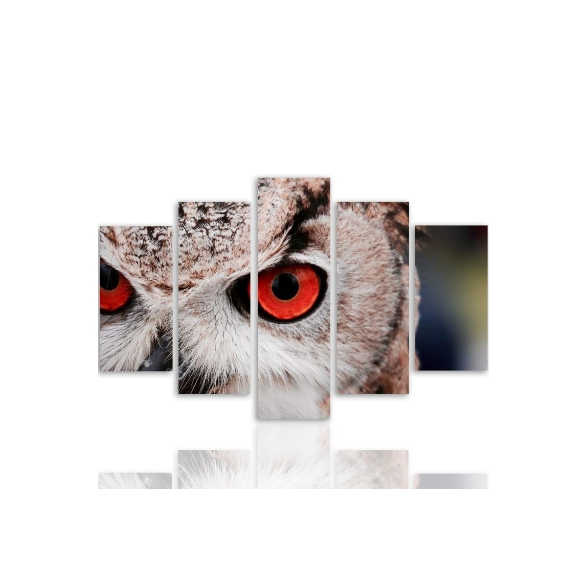 Five Part Picture On Canvas, Pentaptych, Type A, Owls Eyes 100x150