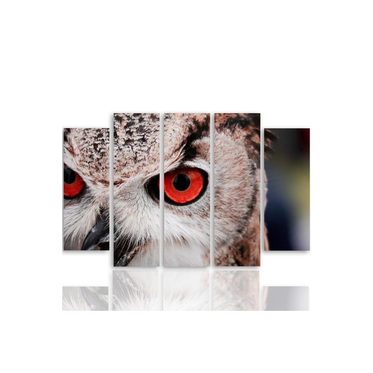 Five Part Picture On Canvas, Pentaptych, Type B, Owls Eyes 100x150