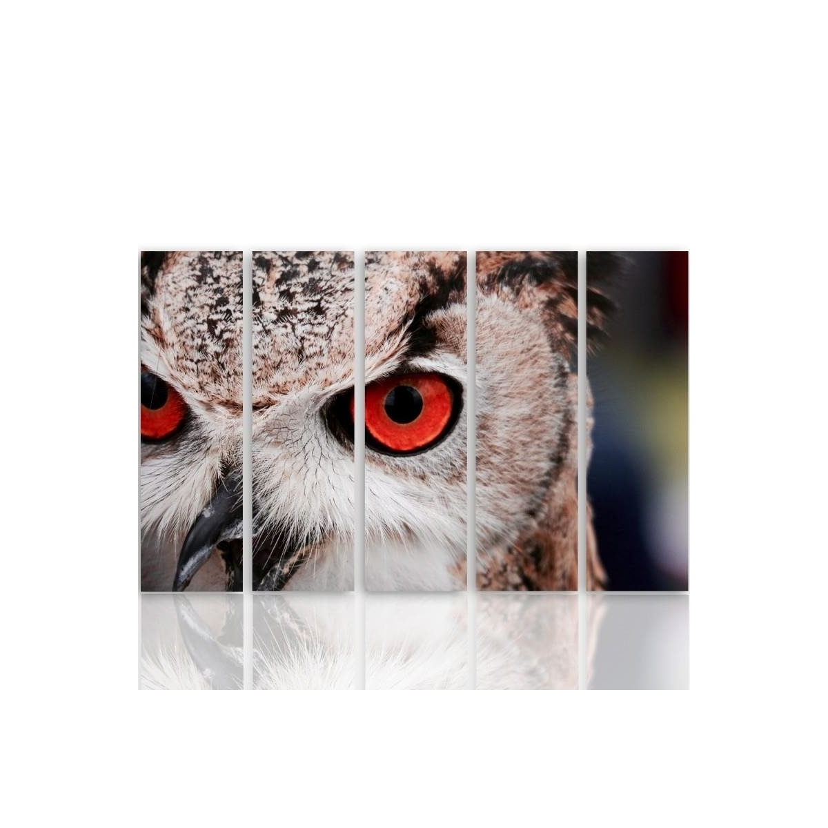 Five Part Picture On Canvas, Pentaptych, Type C, Owls Eyes 100x150