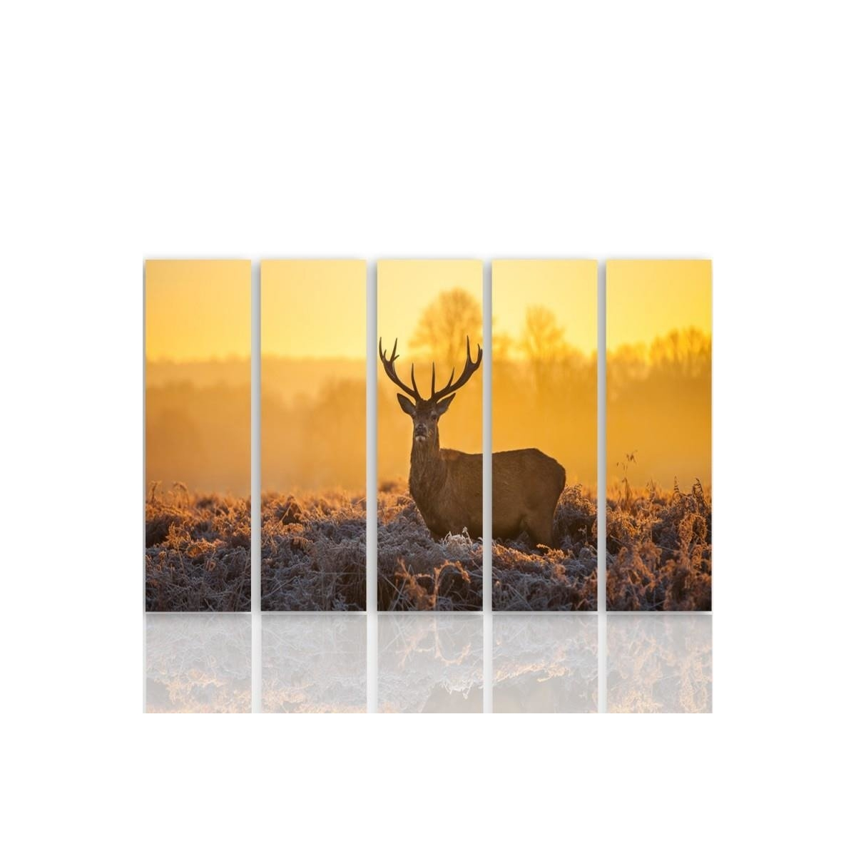 Five Part Picture On Canvas, Pentaptych, Type C, Deer Sunset 2 100x150