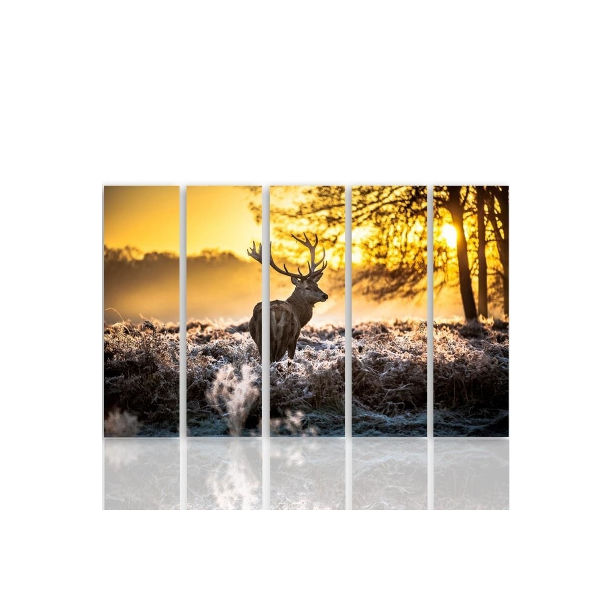 Five Part Picture On Canvas, Pentaptych, Type C, Deer Sunset 100x150